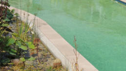View of freshwater pool and in pool garden
