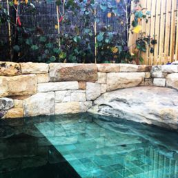 Corner of a Natural Swimming pool with tiles, rocks and garden