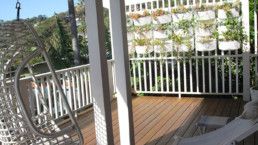 View of decking and vertical garden